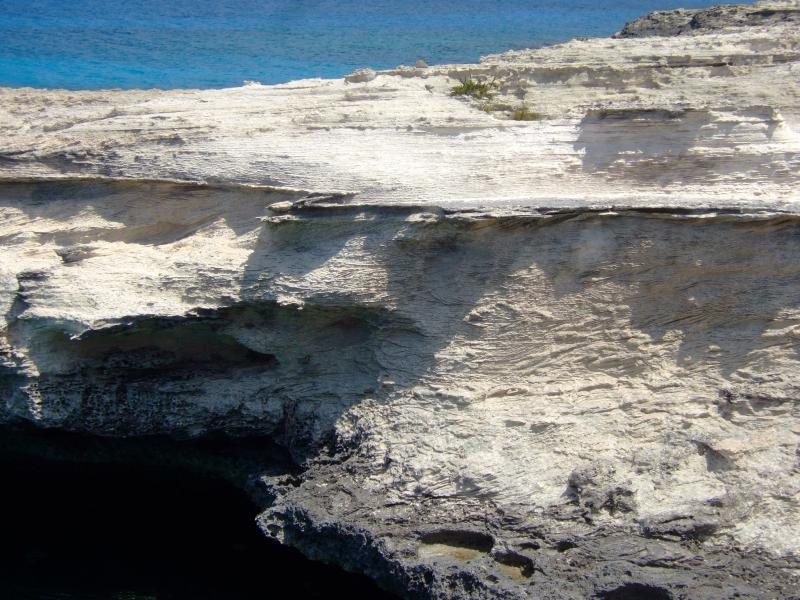 Turks and Caicos, West Caicos Island, Pleistocene Carbonate Beach