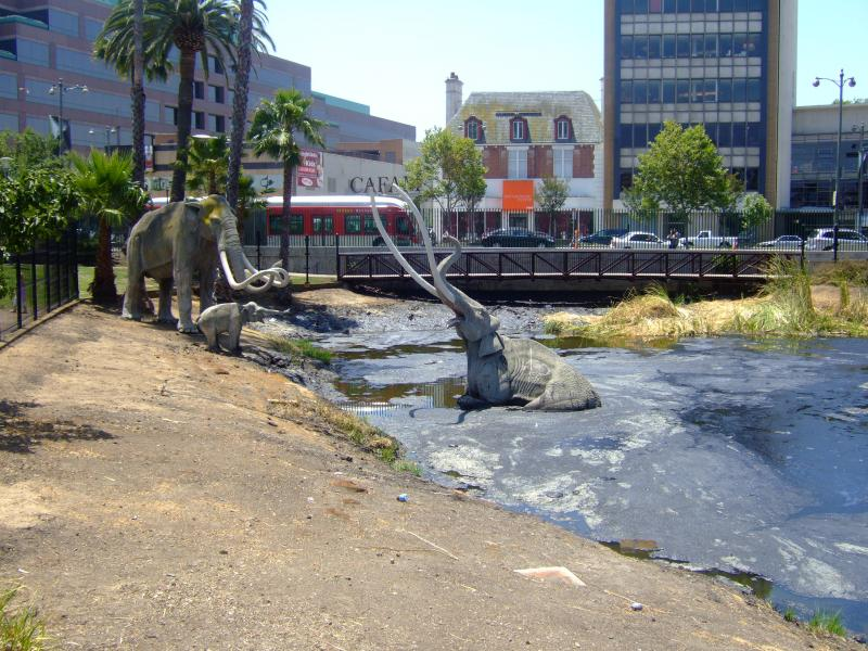La Brea Tarpits, Pitch, Genesis Flood